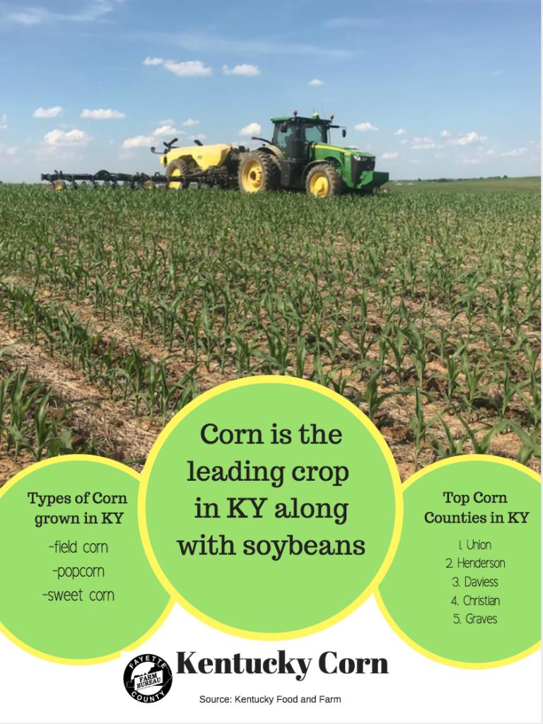 Agriculture Facts – Fayette County Farm Bureau Federation